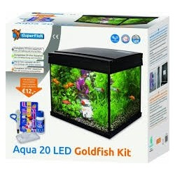 Start 20L goldfish