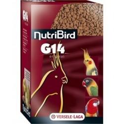 Nitribird G14 Original
