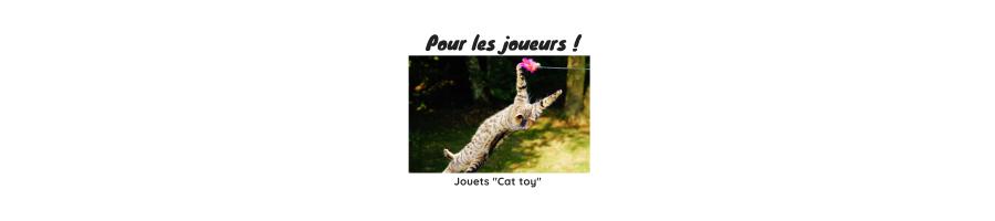 Jouets pour chats et chatons.