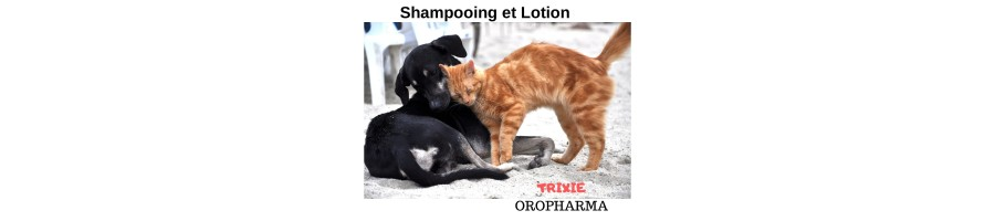 Shampooings et lotions